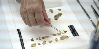Frammenti del rotolo scoperti nel deserto della Giudea dopo la conservazione (foto Shai Halevi/Aia)