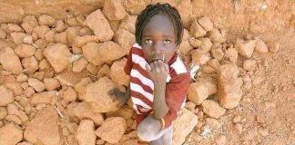 Report crisi alimentare